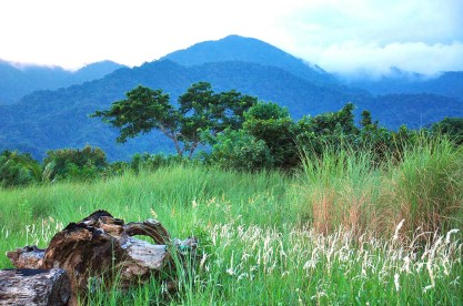 The majestic Sierra Madre provides an excellent backdrop.